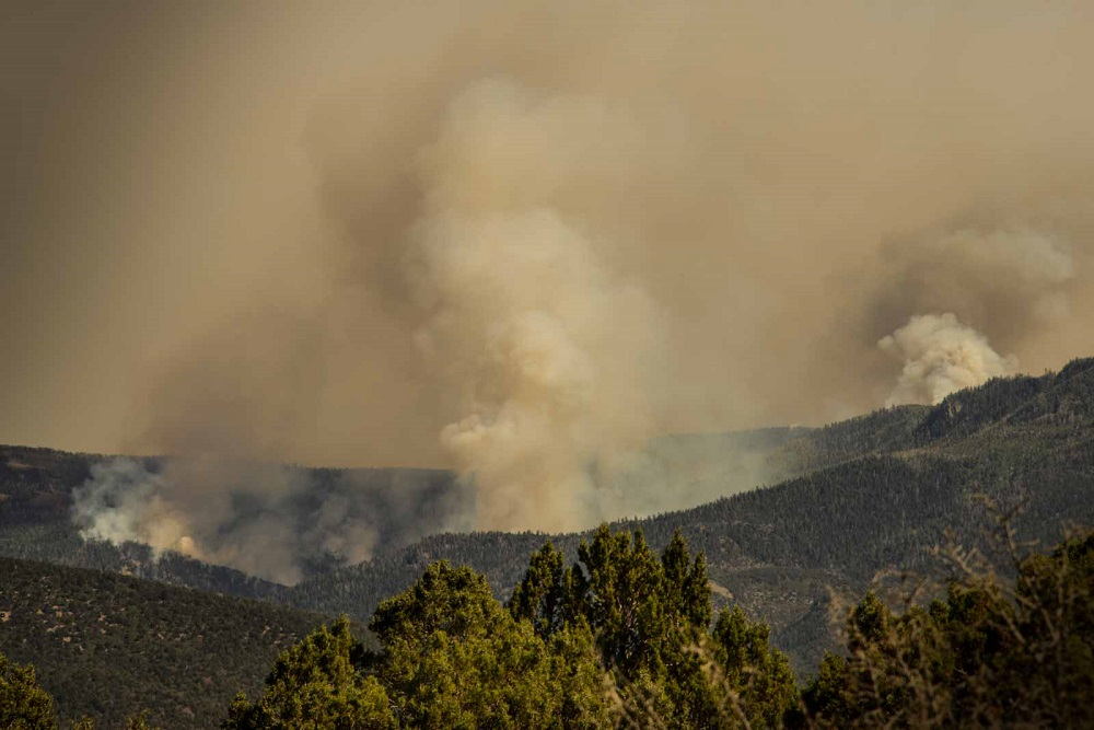 Forest Fire, Central Utah, 2016