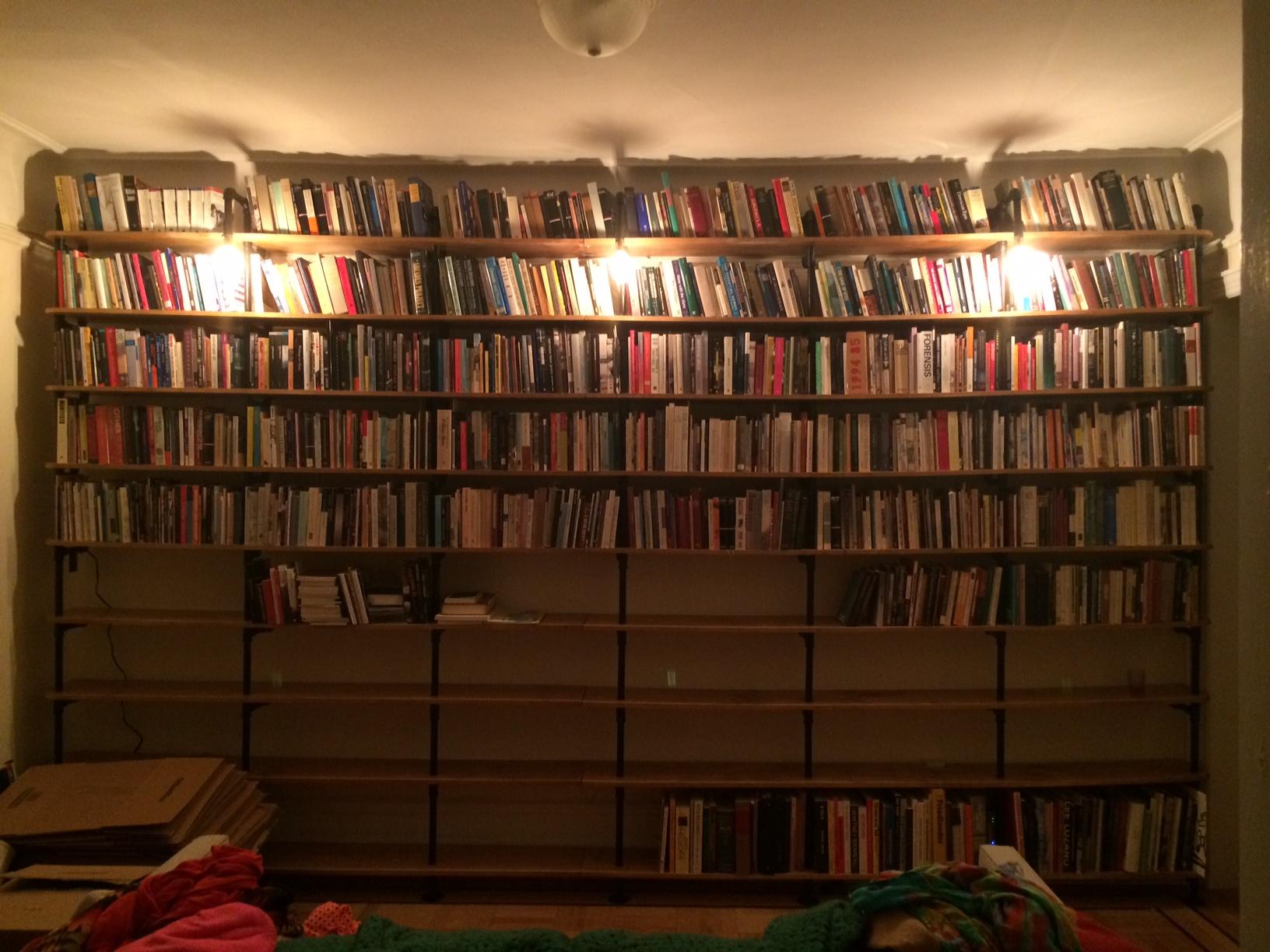 Donovan-Lasky Shelves 1.JPG