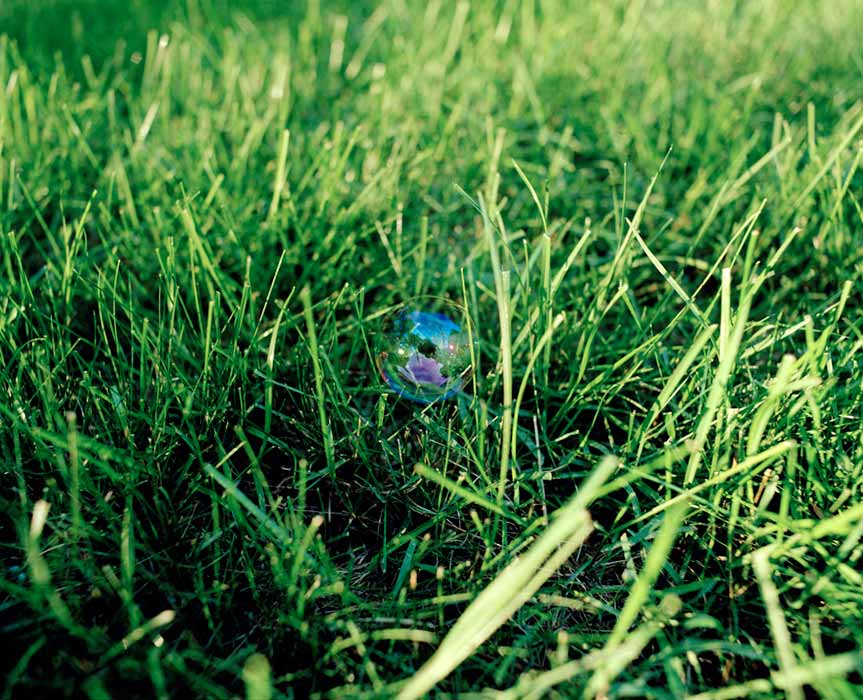 A BUBBLE RESTS IN THE GRASS