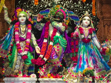 The resident deities of the Eco-Village, Sri-Sri Radha-Vrindavan-Bihari, along with a deity of Sri Caitanya Mahaprabhu, the avatar of Krishna at the root of the community's Caitanya Vaishnava theology, practice, and culture.
