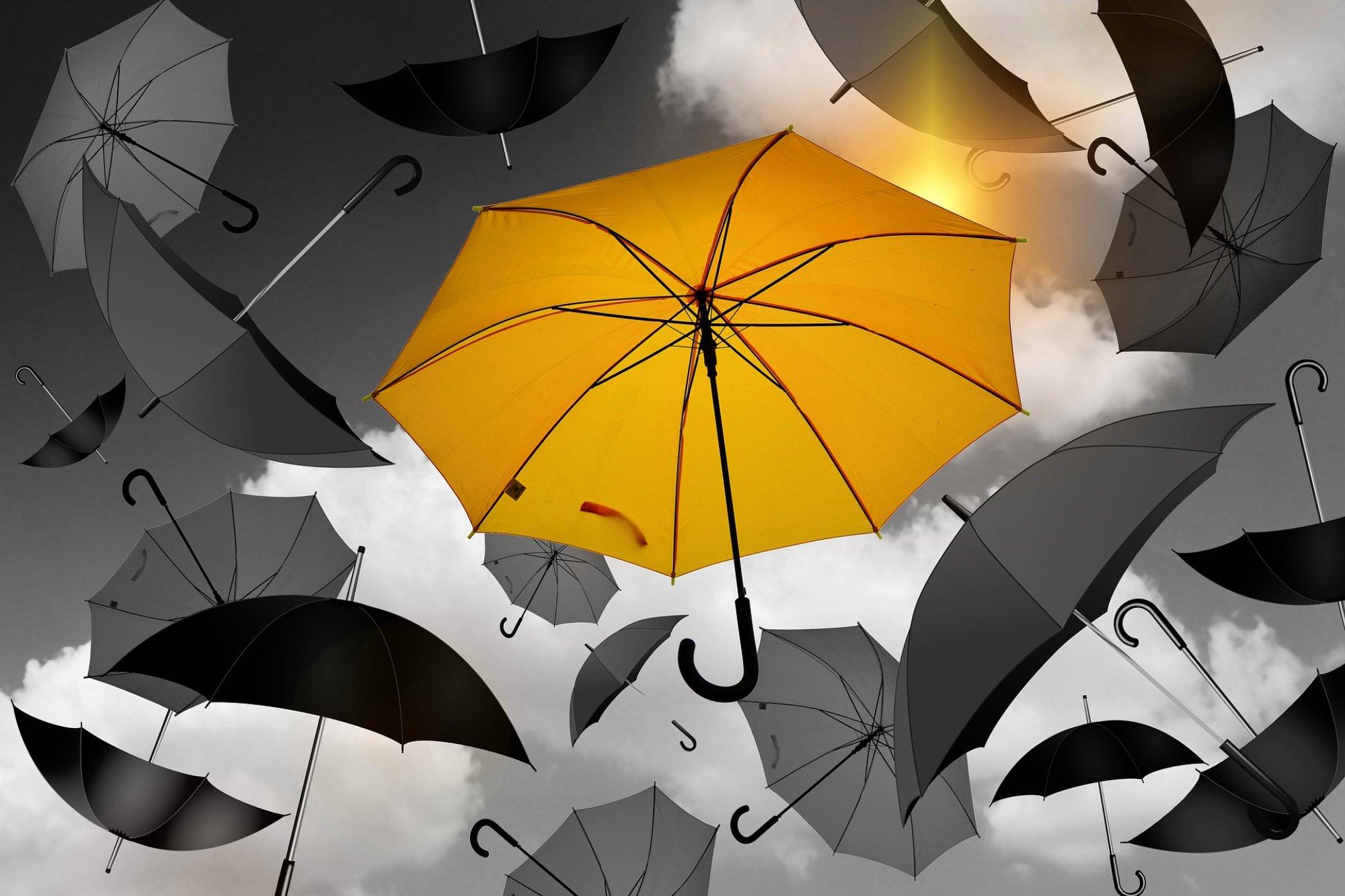 yellow umbrella.jpg