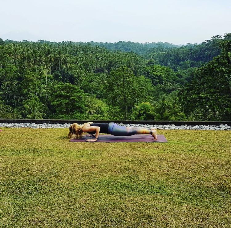 Core Plank Pic.jpg