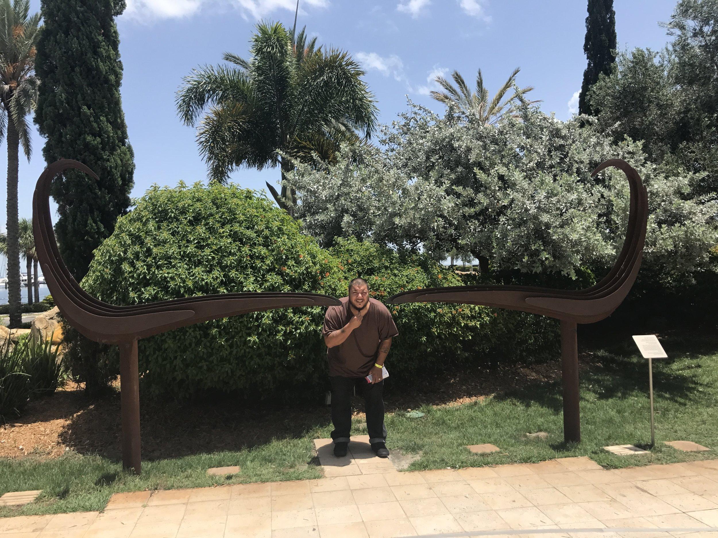 salvador dali museum st petersburg review