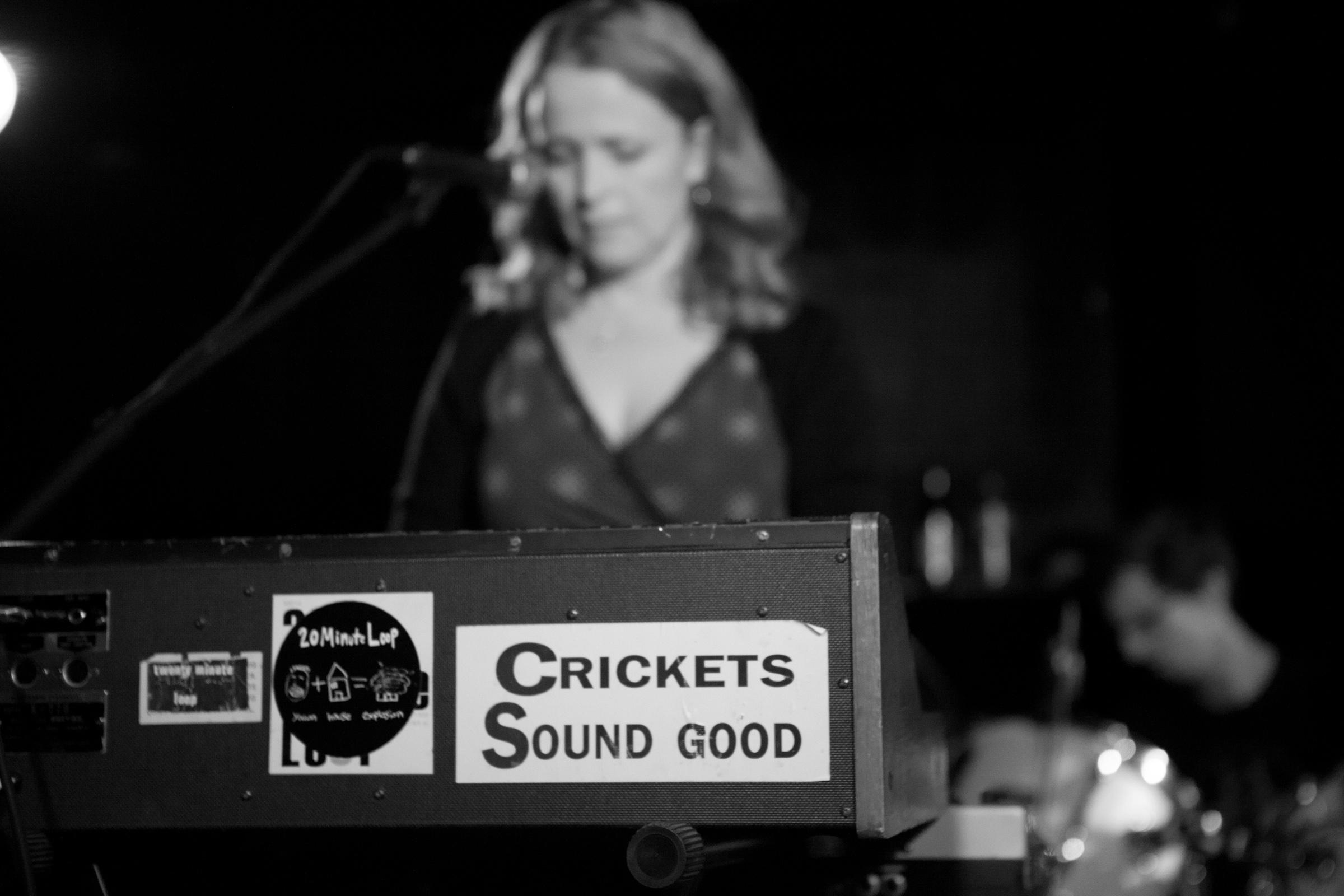 Crickets STILL sound good. Noise Pop 2012