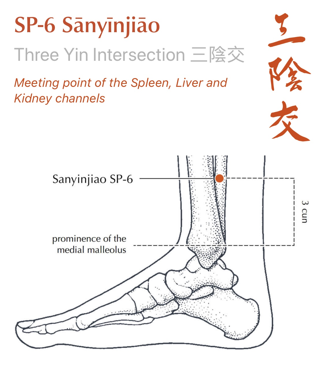 Image courtesy of Manual of Acupuncture App by Peter Deadman