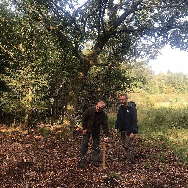 Wat een dag! Gisteren hebben we samen met de boswachters van @staatsbosbeheer de locaties van de 3 nieuwe Cabiners vastgelegd! 🙌🏽🌲☀️ • • • #drenthe #mooidrenthe #hartvandrenthe #cabin #cabiner #tinyhouse #natuurhuisje #zelfvoorzienend #sustainable #duurzaam #hiking #wandelen #staatsbosbeheer