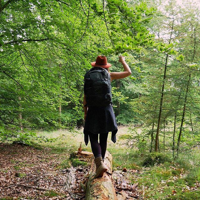 Bij Cabiner wisten wij dit al lang, maar het is nu ook wetenschappelijk bewezen: door de natuur in te trekken leef je langer en gezonder! 120 Minuten per week is voldoende, ga bij je huisarts langs voor een verwijzing ;) 👨🏻⚕️📝🌳Lees het hele artikel op de website van @nytimes (link: nyti.ms/2WFNp6h) • • • #cabiner #buitenleven #buitenspelen #livelong #lovefornature #intothewoods #stayoutside #nature #outdoorlife #bijzonderplekje #cabininthewoods #offgrid #adventuretime #explore #exploremore #forrestbathing #cabinlife #tinyhouse #perfectgetaway #🌿