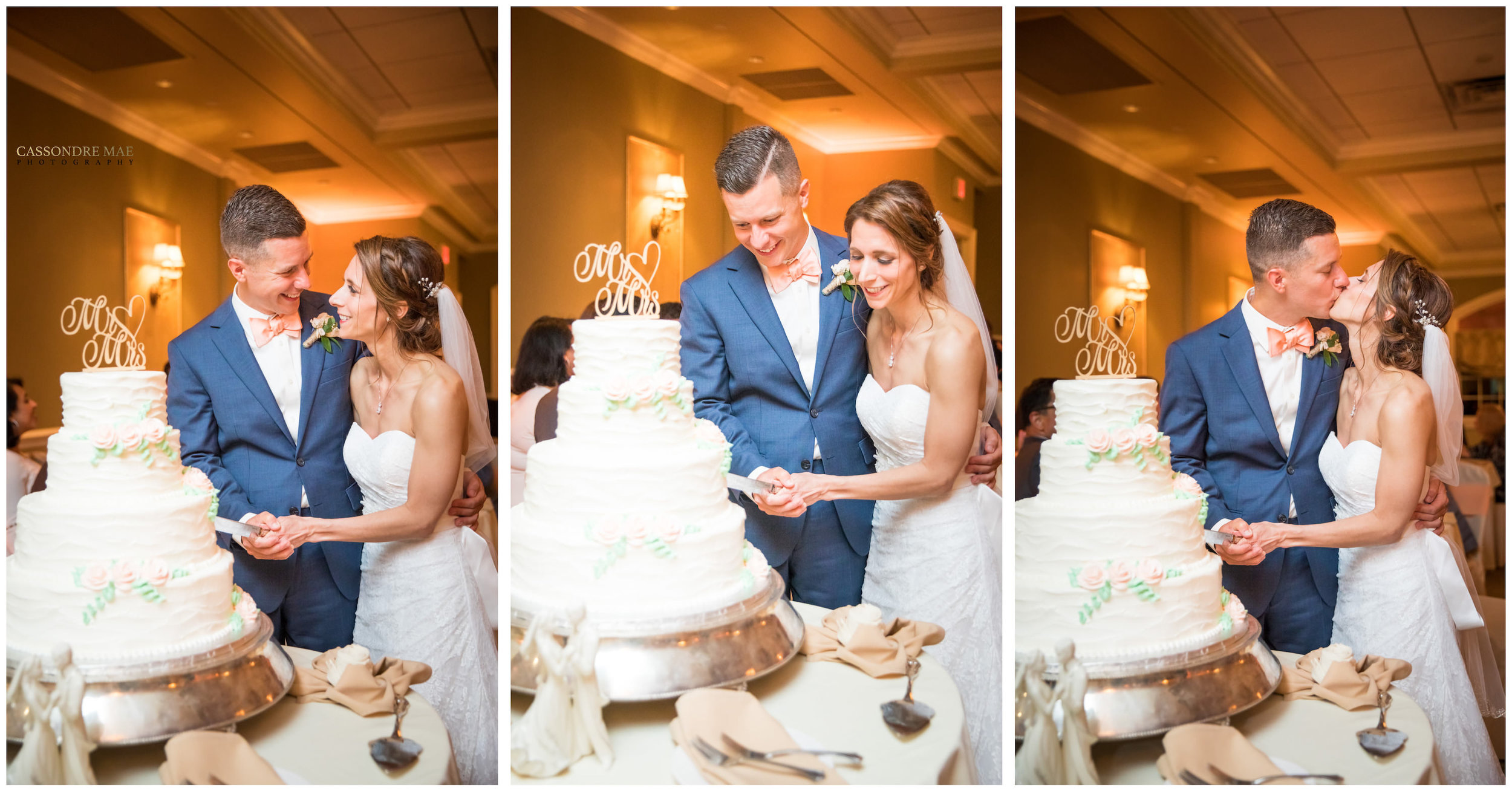 Cassondre Mae Photography Links at Unionvale Wedding 24.jpg