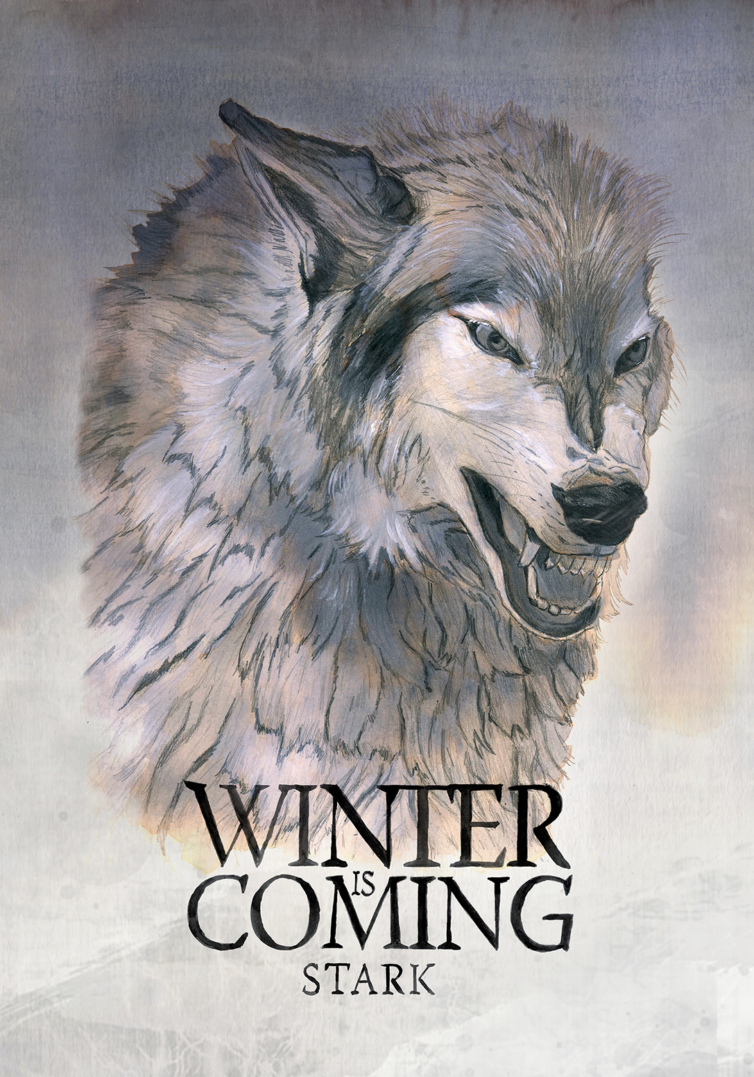 "House Stark ""Winter is coming"""