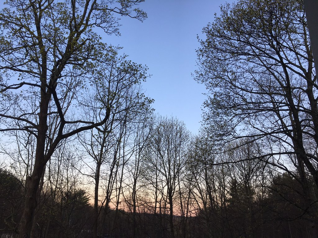 averill_park_sunrise_1024x1024.jpeg