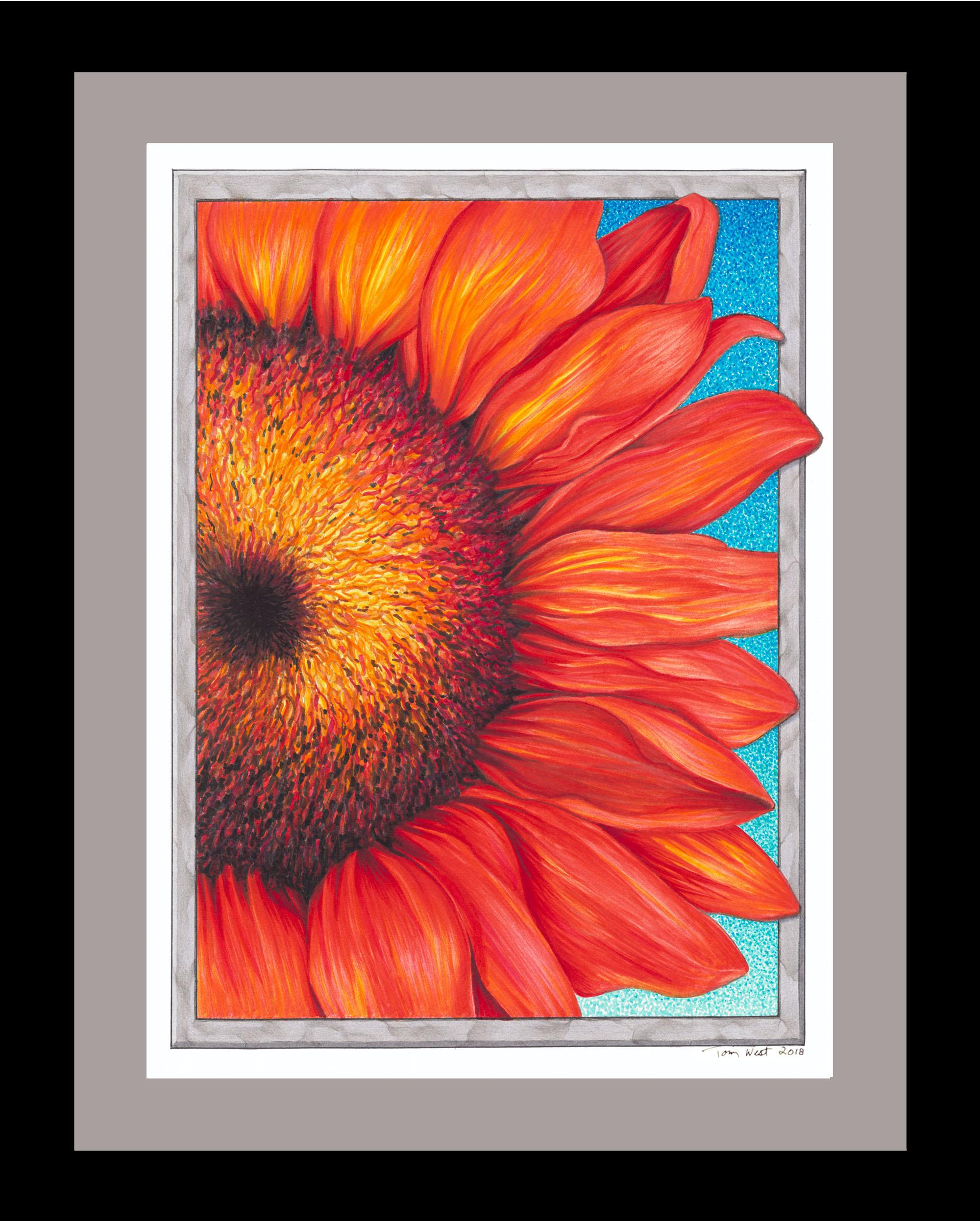 Sunflower 100dpi.jpg