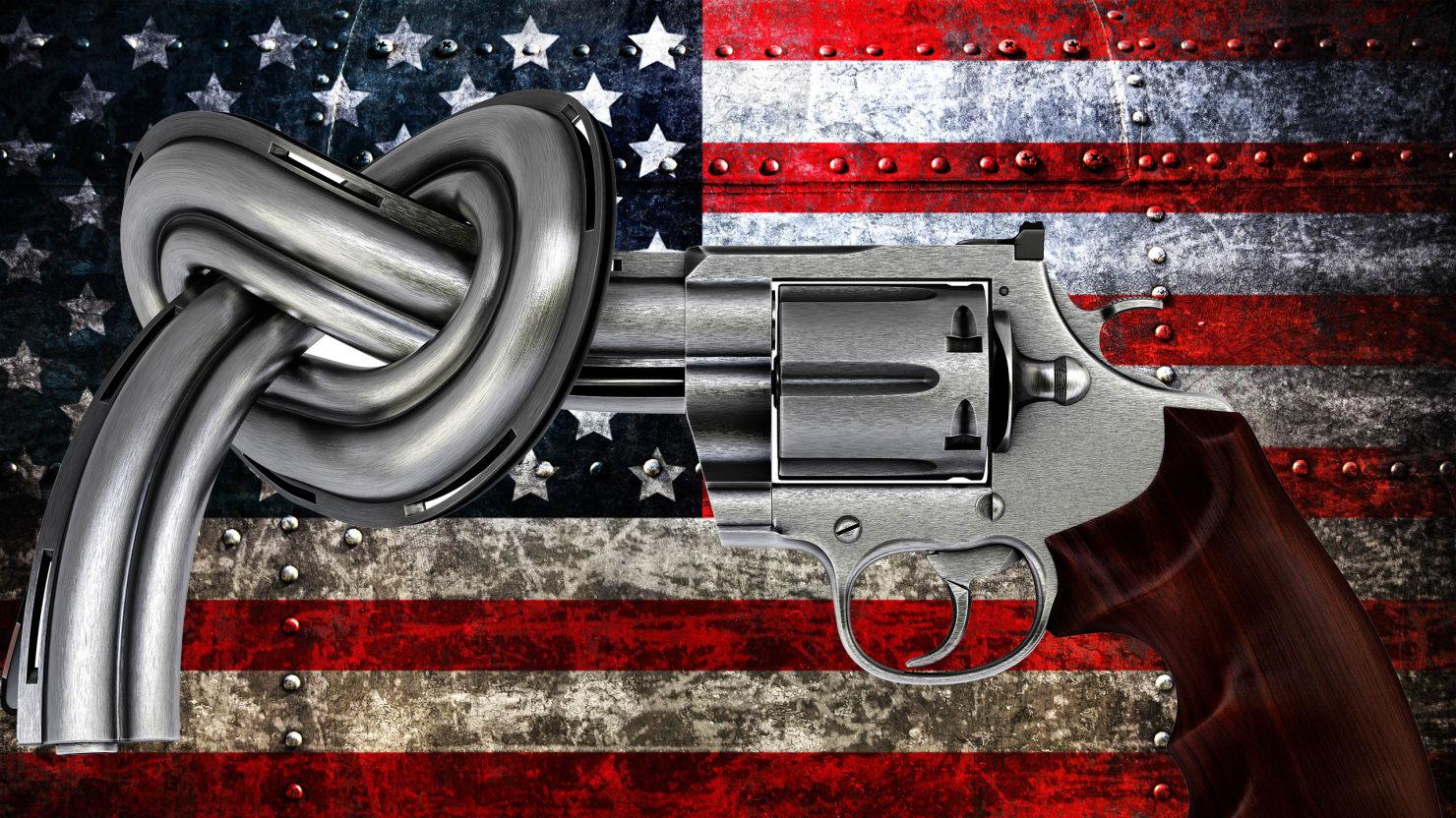 daily beast gun.jpg