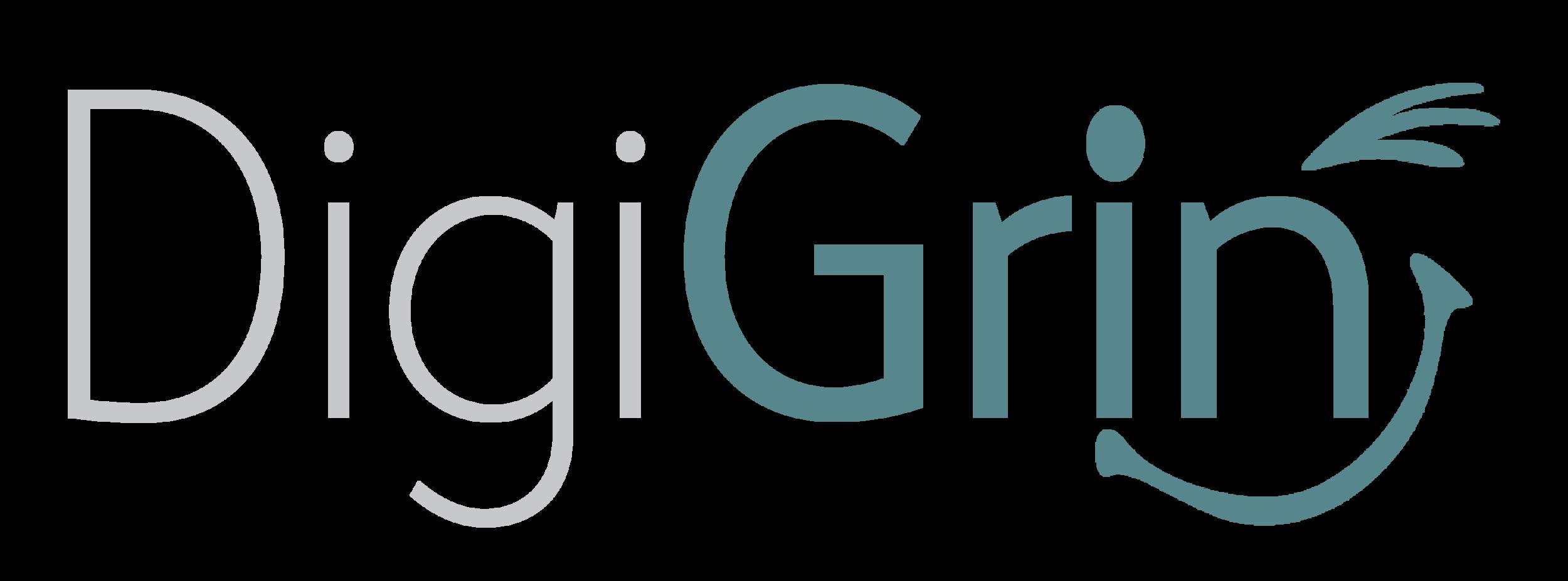 DigiGrin Logo Long.png