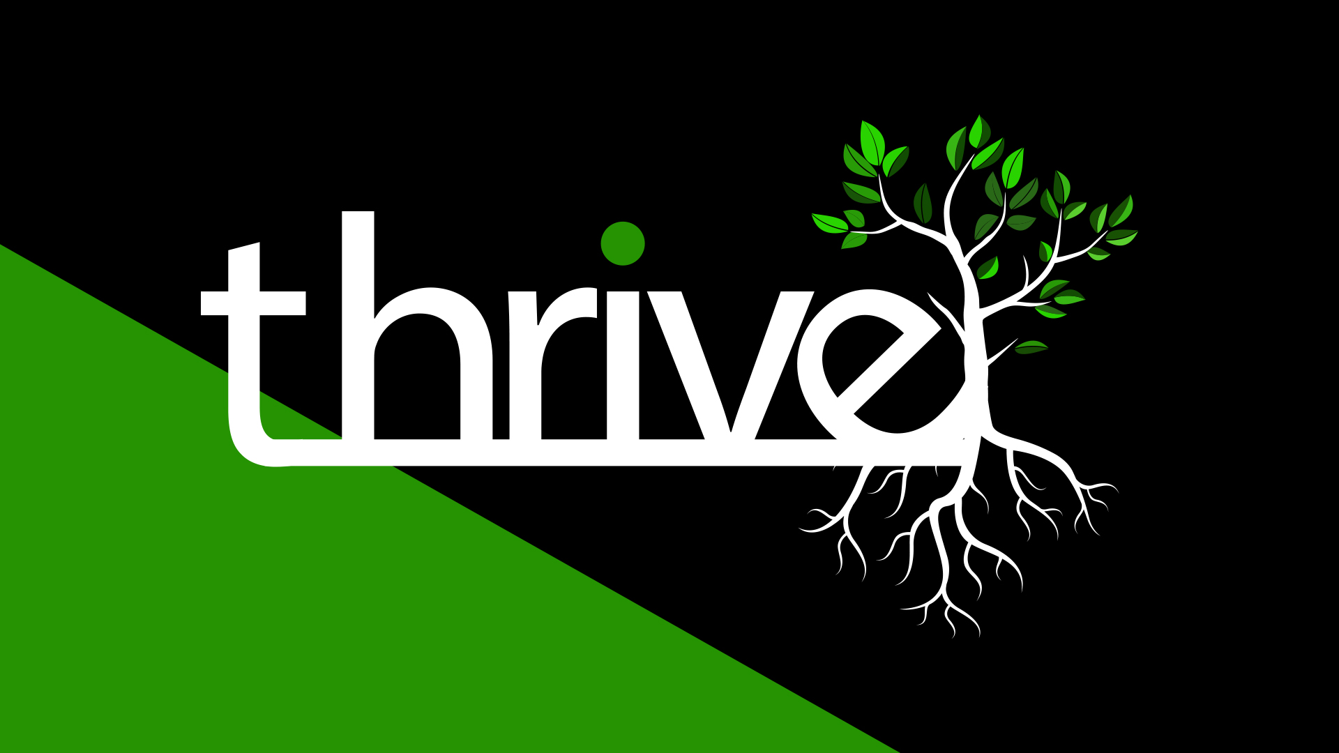 2018 - Thrive - Although our church was undergoing a transition, we were challenged to THRIVE in the midst of it!  Some areas of focus this year were emotional maturity, Kingdom power, leadership development, and presenting the Gospel through drama and story at Easter.  Click the graphic to watch this year's Thrive Report beginning at 52:01.