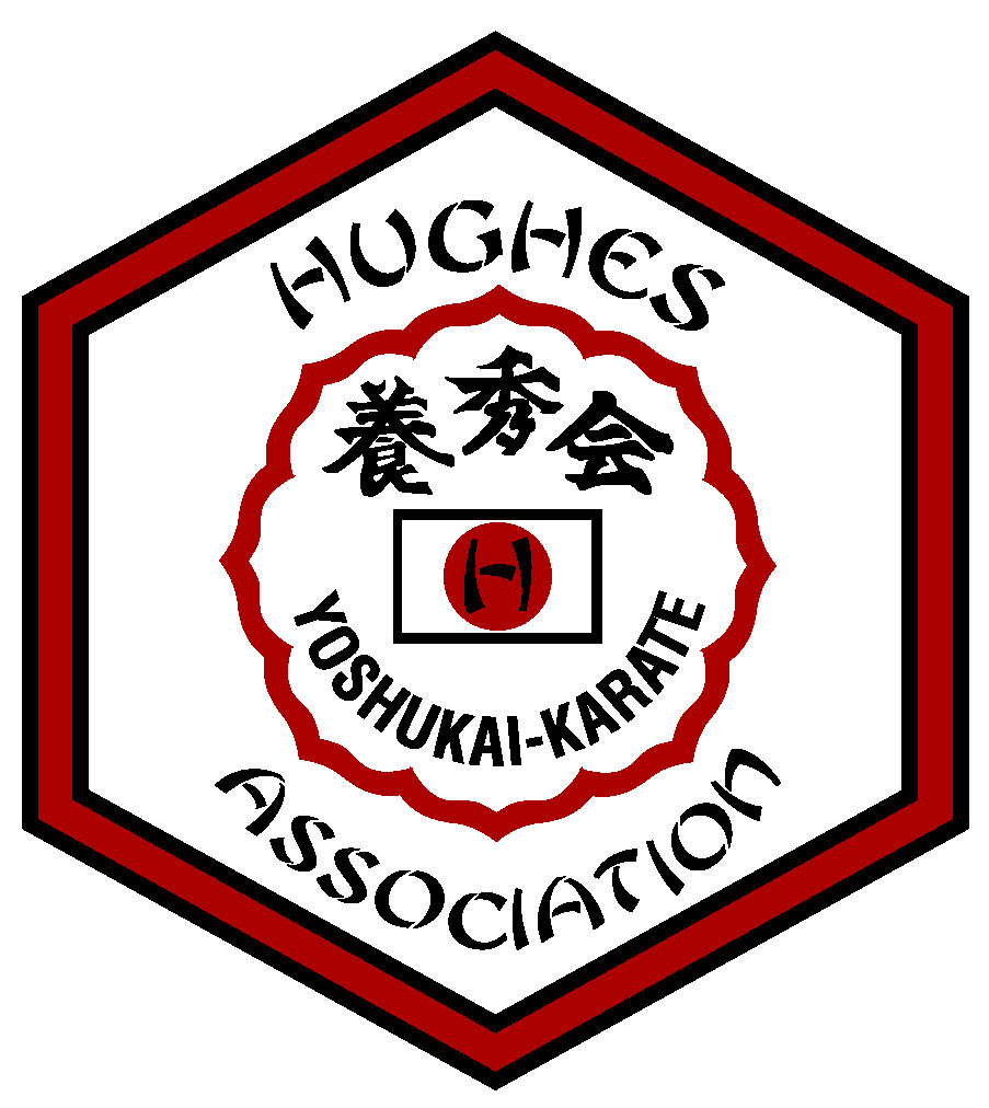 A serious traditional martial arts school, with a history all the way back to Japan!