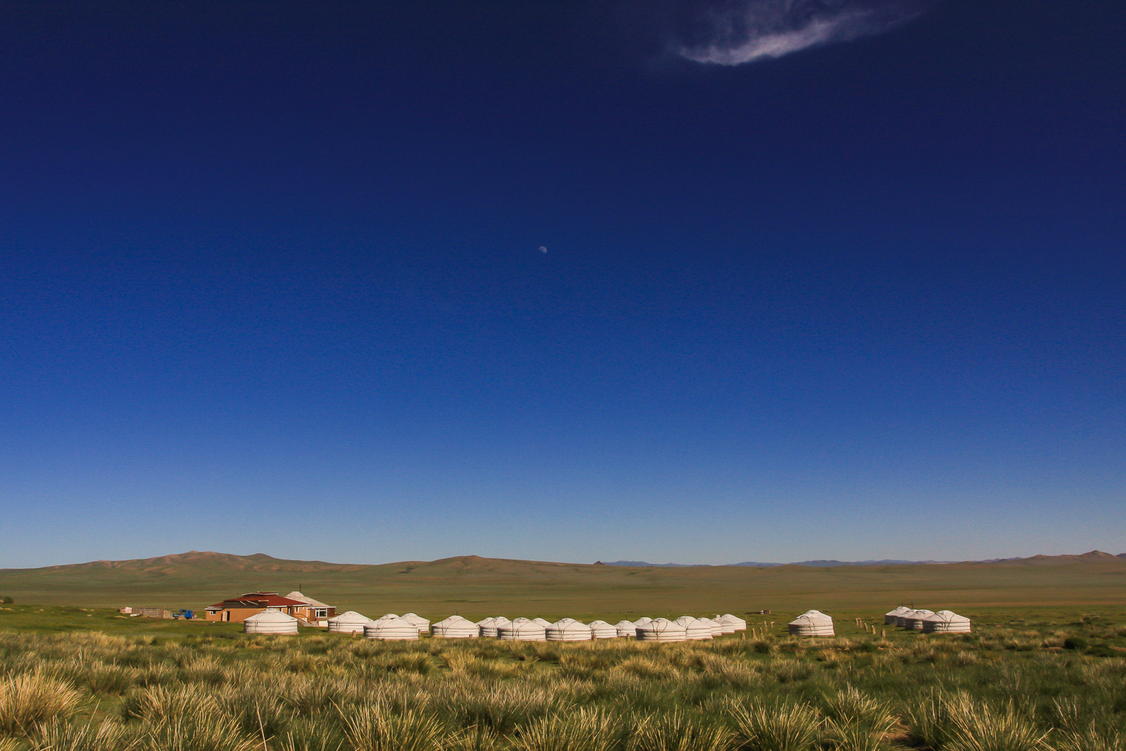 Gobi Desert Yurt - Mongolia Travel Specialists