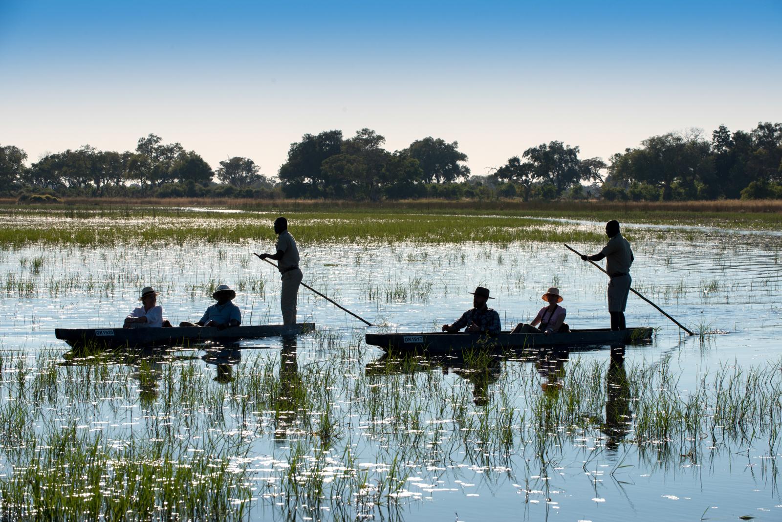 Boat Safari, Okavango Delta, Botswana