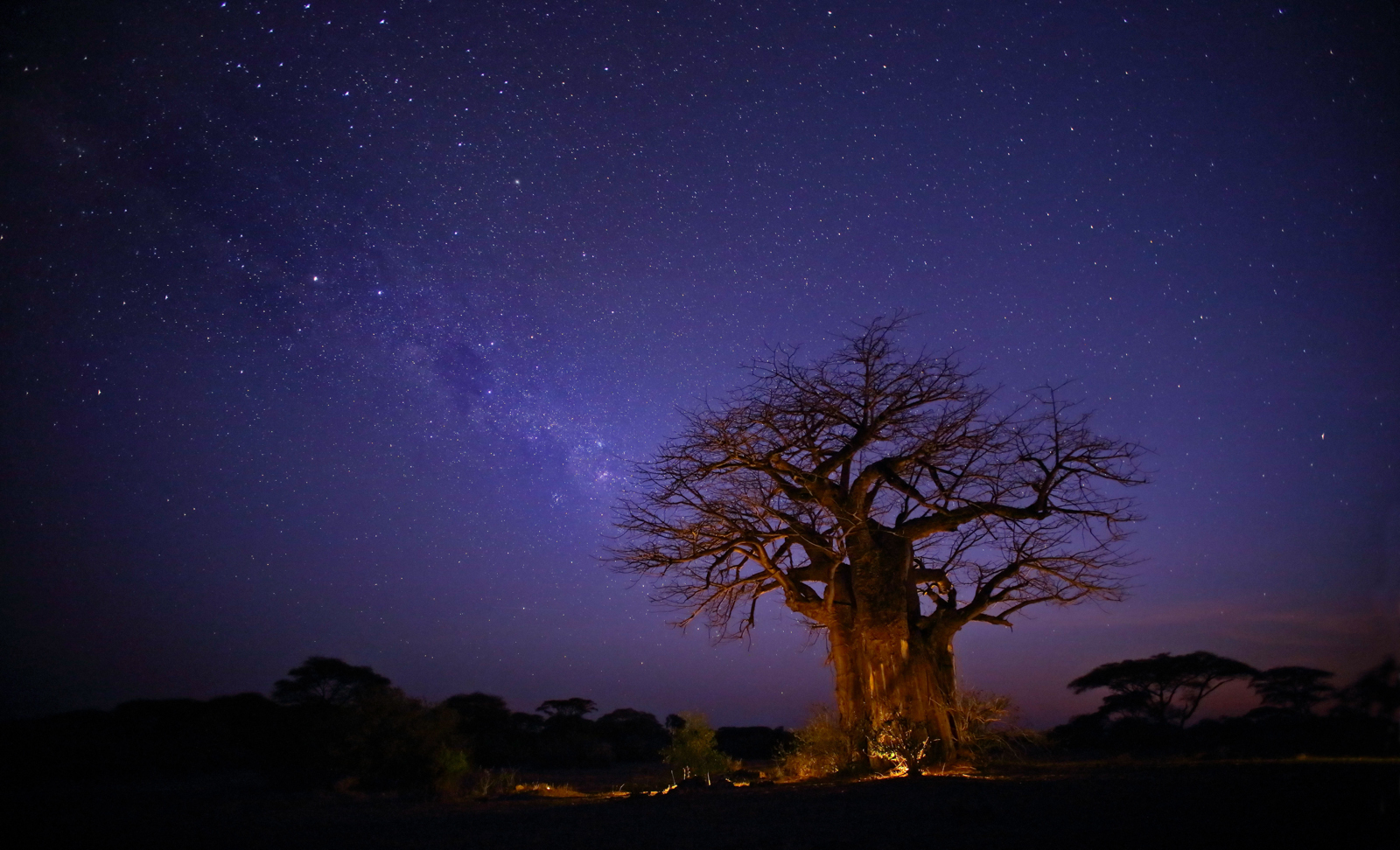 Star Gazing, Ruaha National Park