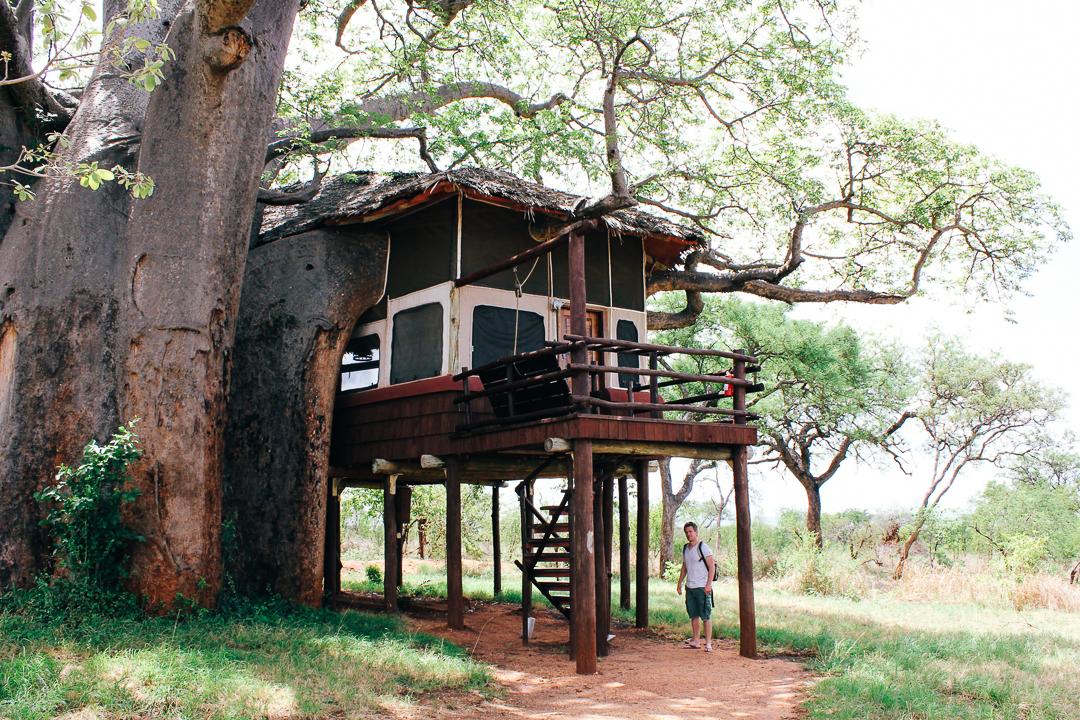 East africa safari tallis journeys.jpg