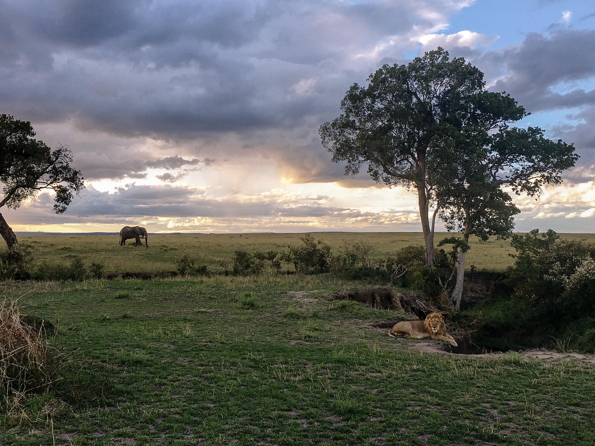 East Africa Honeymoon Safari