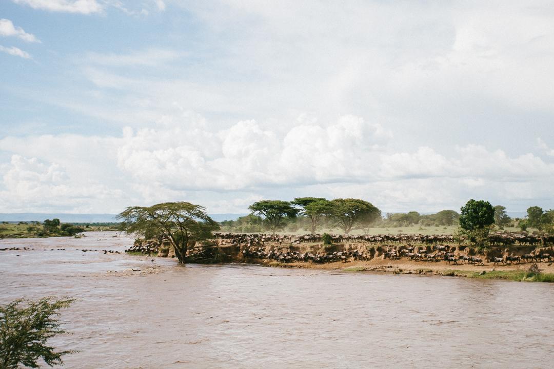 TANZANIA IN STYLE