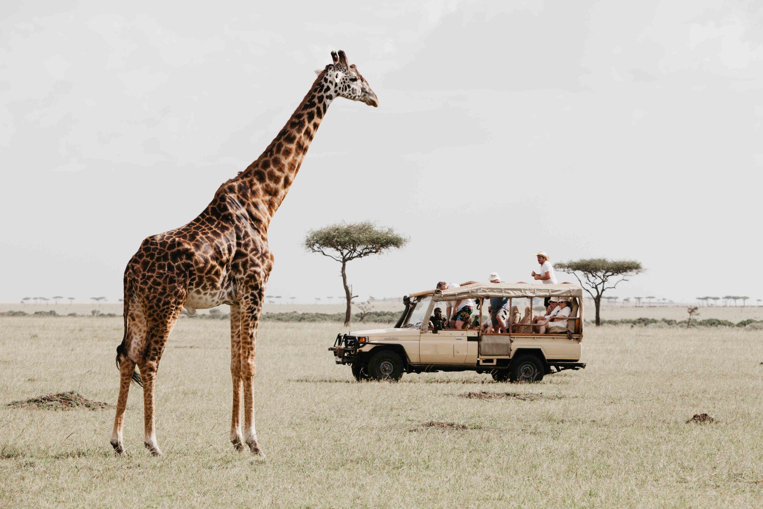 Kenya Safari Explorer Bespoke Africa Travel.jpg