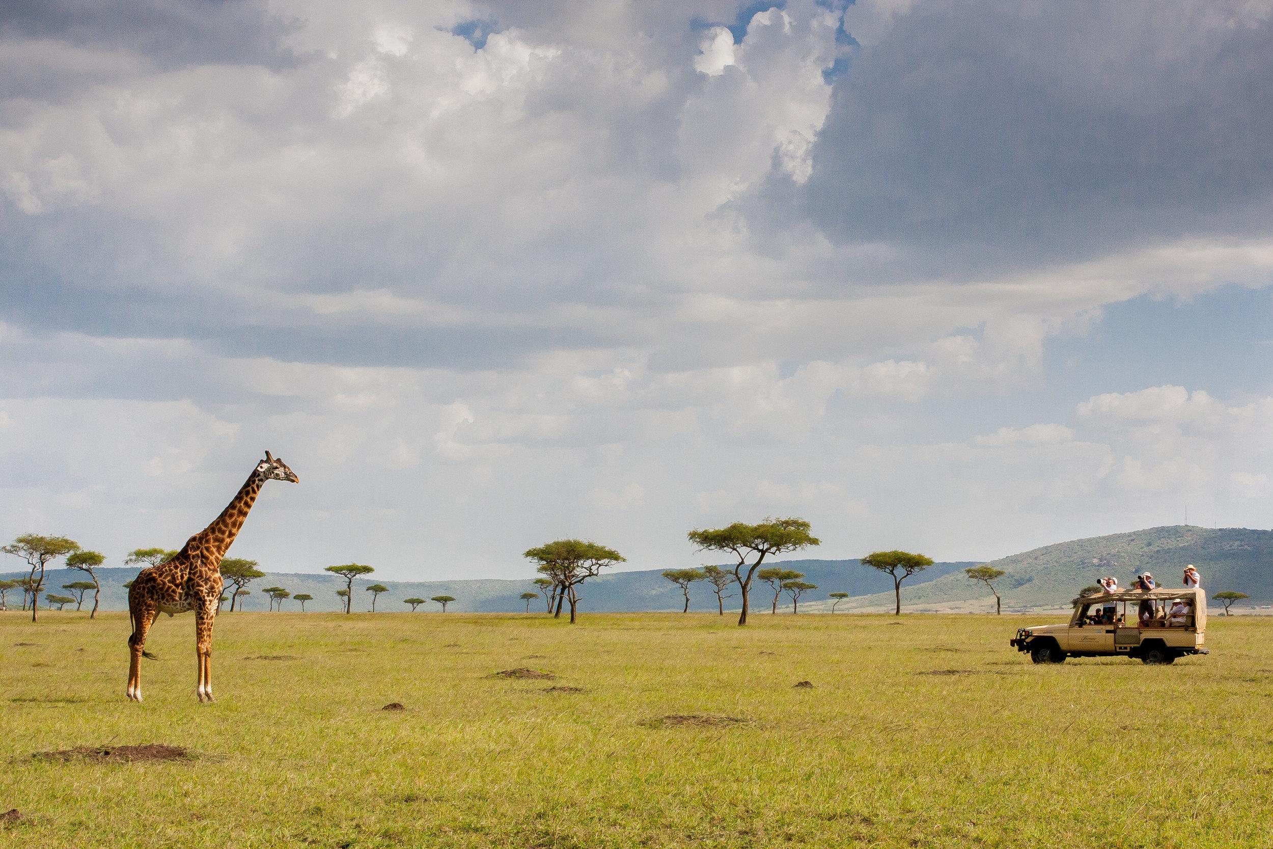 Rwanda travel safari