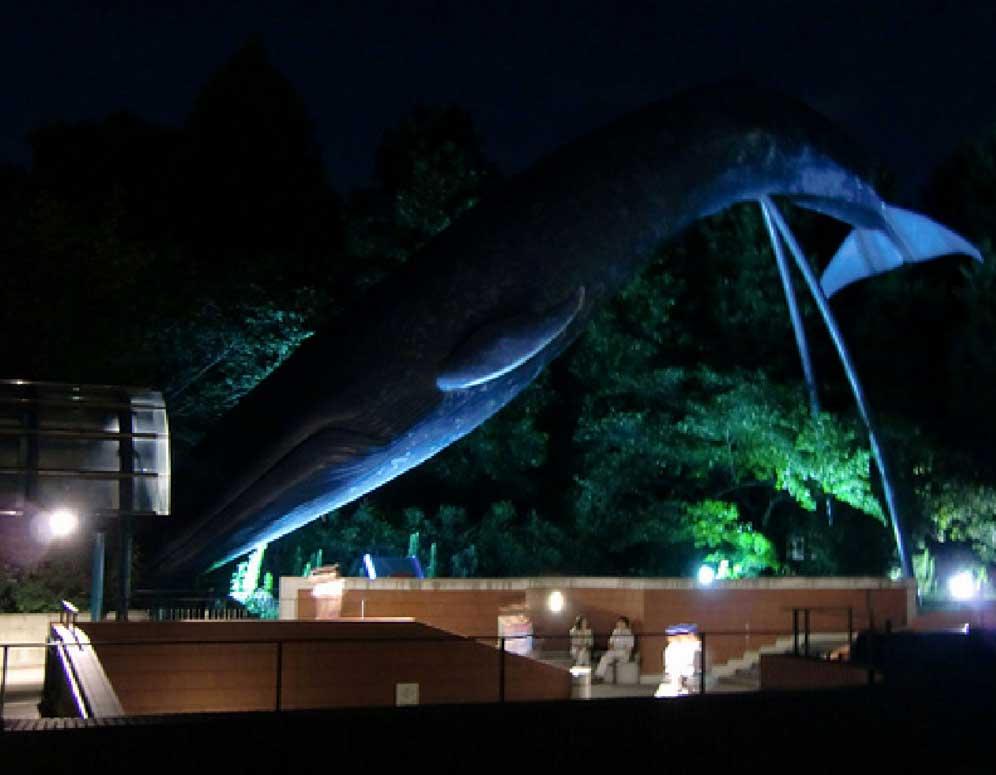 2014 (1月) 上野国立科学博物館にLED照明「XI」を導入