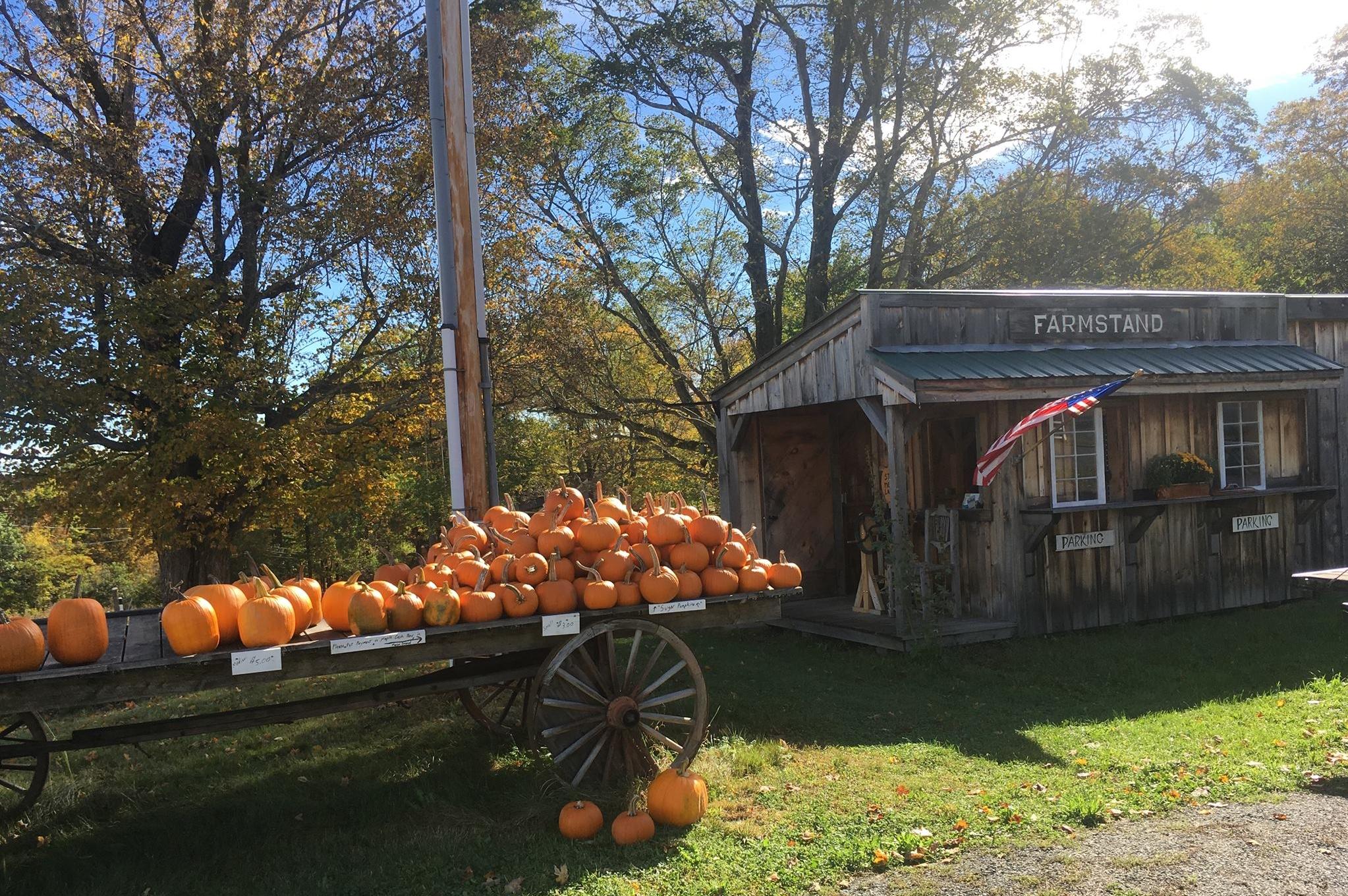 farm stand.jpg