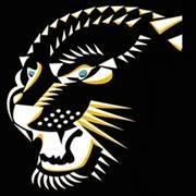CrossFit Jaguar.jpg