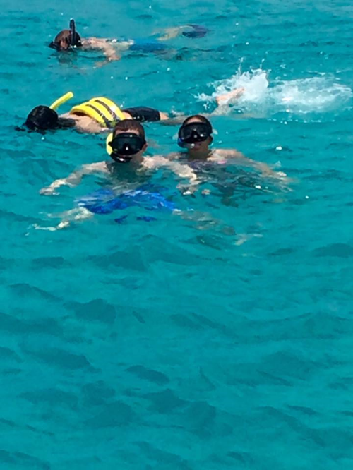 Snorkling with turtles!