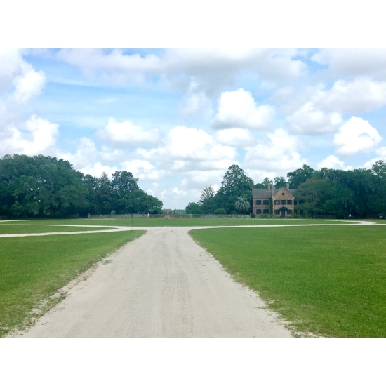 The Middleton Plantation
