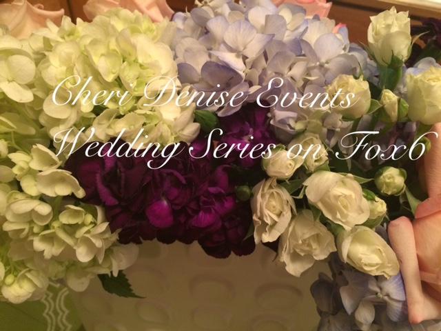 Fox 6 Wedding Series Announcement.JPG