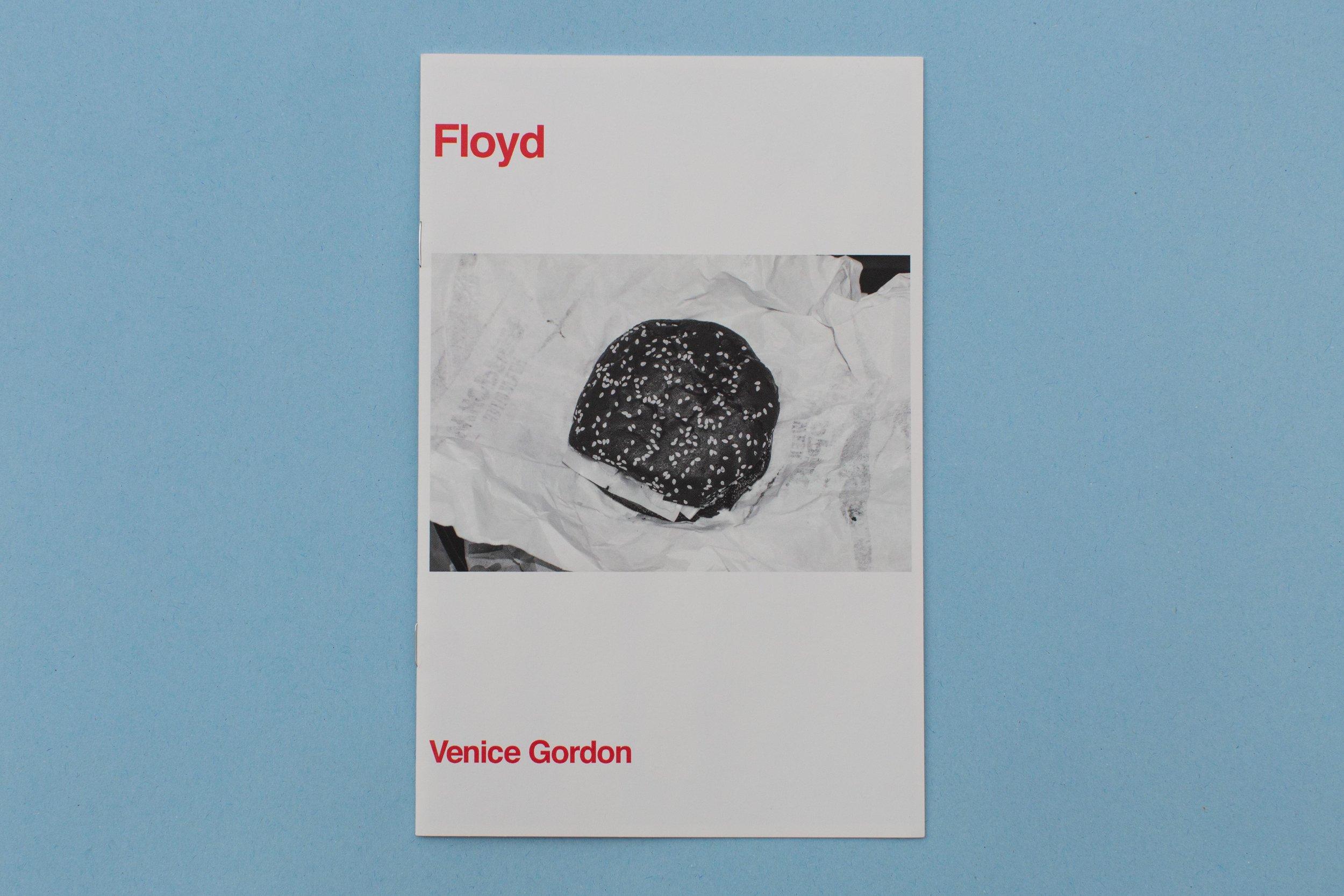 VG_FLOYDB_01.jpg