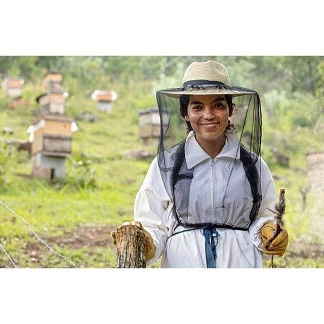 """May we know them ☑️ Oralia Ruano Lima """"She was among the first women in her native community to join an all-female entrepreneurship project as a beekeeper. Today the women beekeepers of Urlanta, a village in the south-eastern region of Guatemala, are bringing in sustainable jobs and income to their rural communities, and changing mindsets and attitudes towards women.""""⠀ Photo: UN Women/Rosendo Quin (#📷 herworth_ via @latermedia)"""