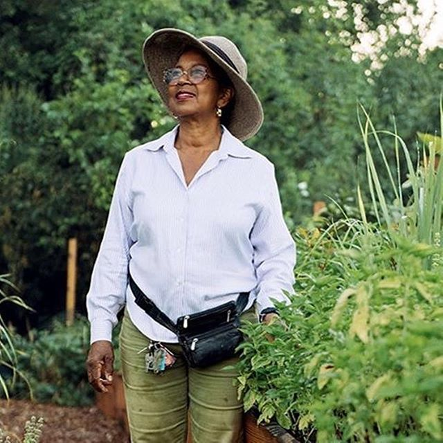 """At an age when most folks have already retired, Jeanette Bell of @gardenonmars manages two urban farms in New Orleans' Lower Ninth Ward, which still bears the scars of Hurricane Katrina. The 72-year-old regularly works well into the evening, tending vegetables and flowers in raised beds. """"I want to keep my lots pristine, because I understand how hard it is to live here,"""" she says. """"My neighbors deserve something pretty to look at."""" She uses one farm to grow vegetables and herbs for Ian Schnoebelen, chef and co-owner of the city's Mariza restaurant; the other yields roses, dahlias, zinnias, and more for local florists. Building community, though, remains Bell's top priority. The profits from Garden on Mars, along with donations, help fund the free horticulture classes she hosts on-site. Bell also provides local families with 4-by-8-foot wooden boxes, soil, and seeds to create their own backyard kitchen gardens. """"I talk to them about how they can grow healthy food—even if it's just lettuce and parsley—and save money at the same time,"""" says Bell. """"That can be very empowering."""" #meetthemodernfarmer #iamamodernfarmer #womenwhofarm (#📷 modfarm  thank you @modfarm for covering stories like these"""
