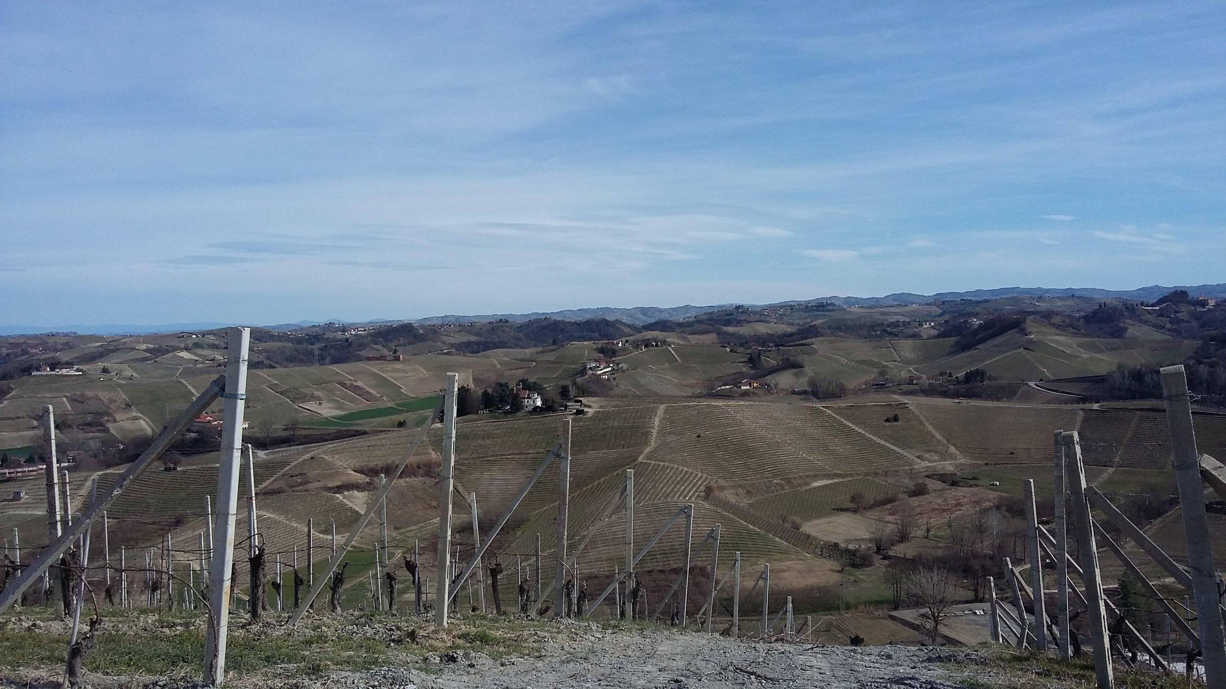 Marzo 2019. Vista sull'anfiteatro di Valmaggiore.