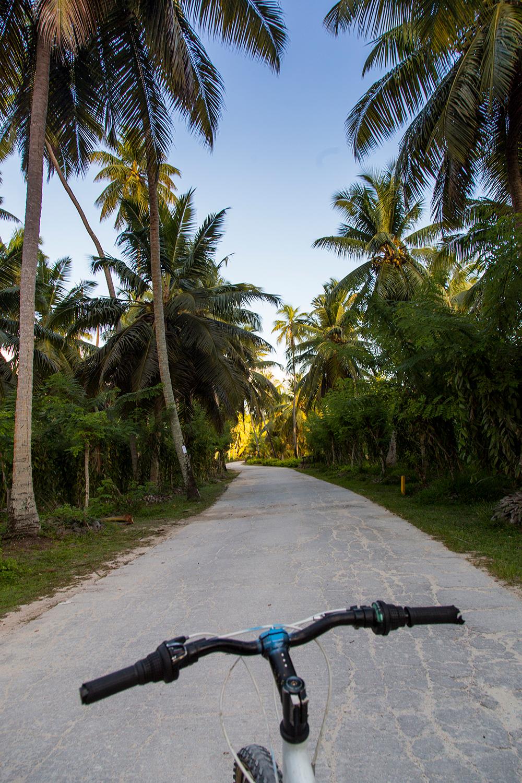 SourceDargent_LaDique_Seychelles_105.jpg