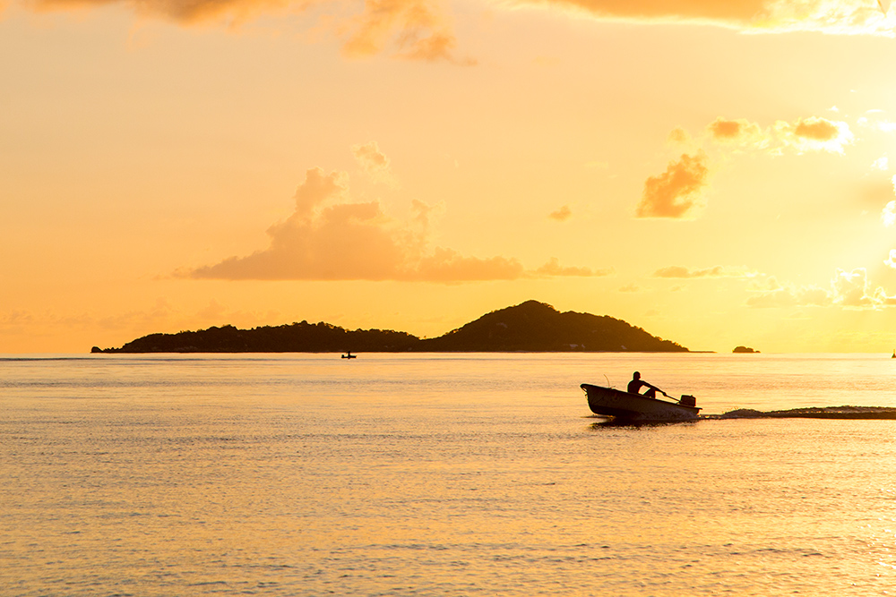 Praslin_Seychelles_153.jpg