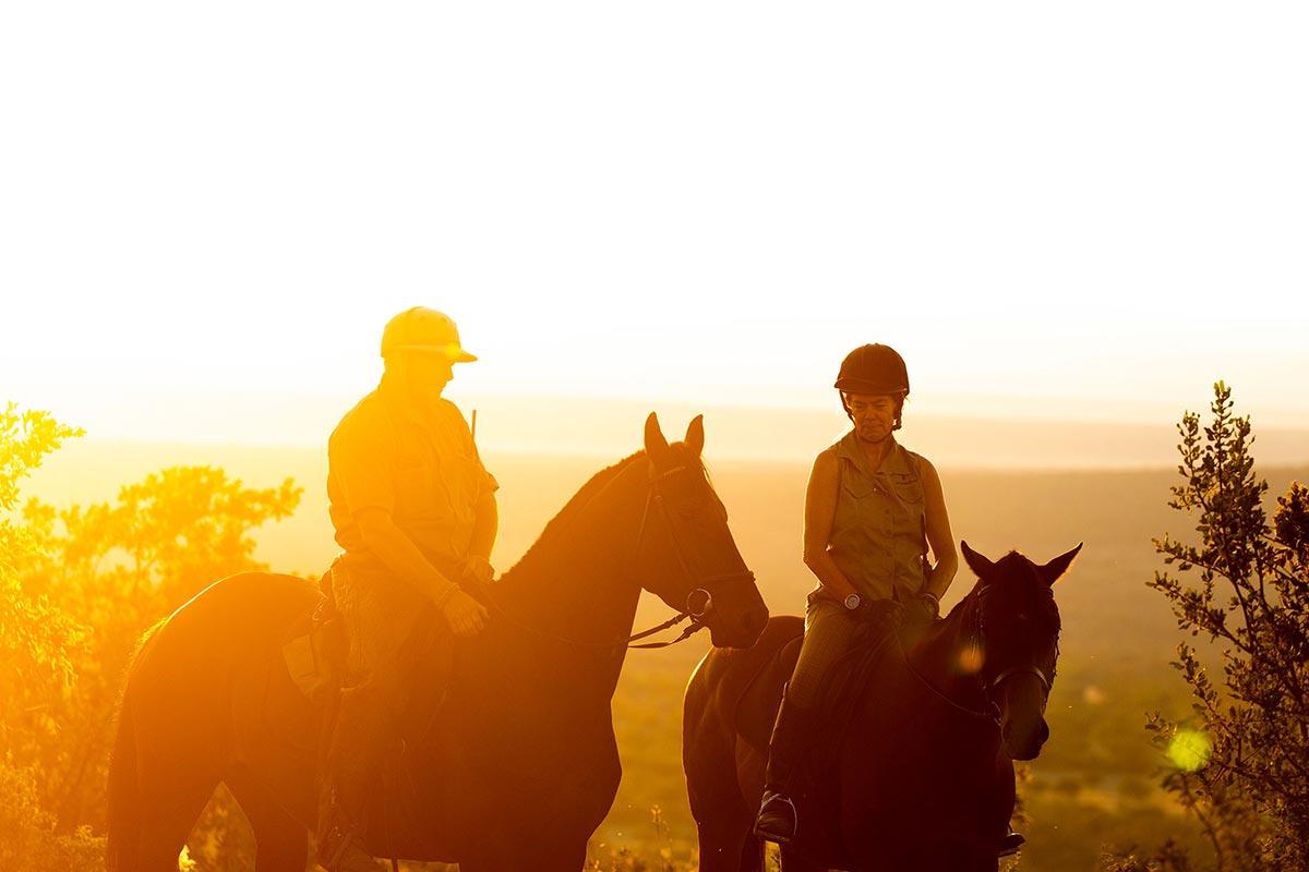 HorseSafari_012.jpg