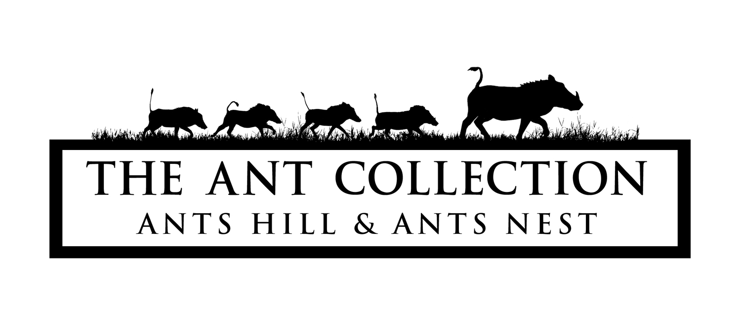 ants-collection-logo-square.jpg