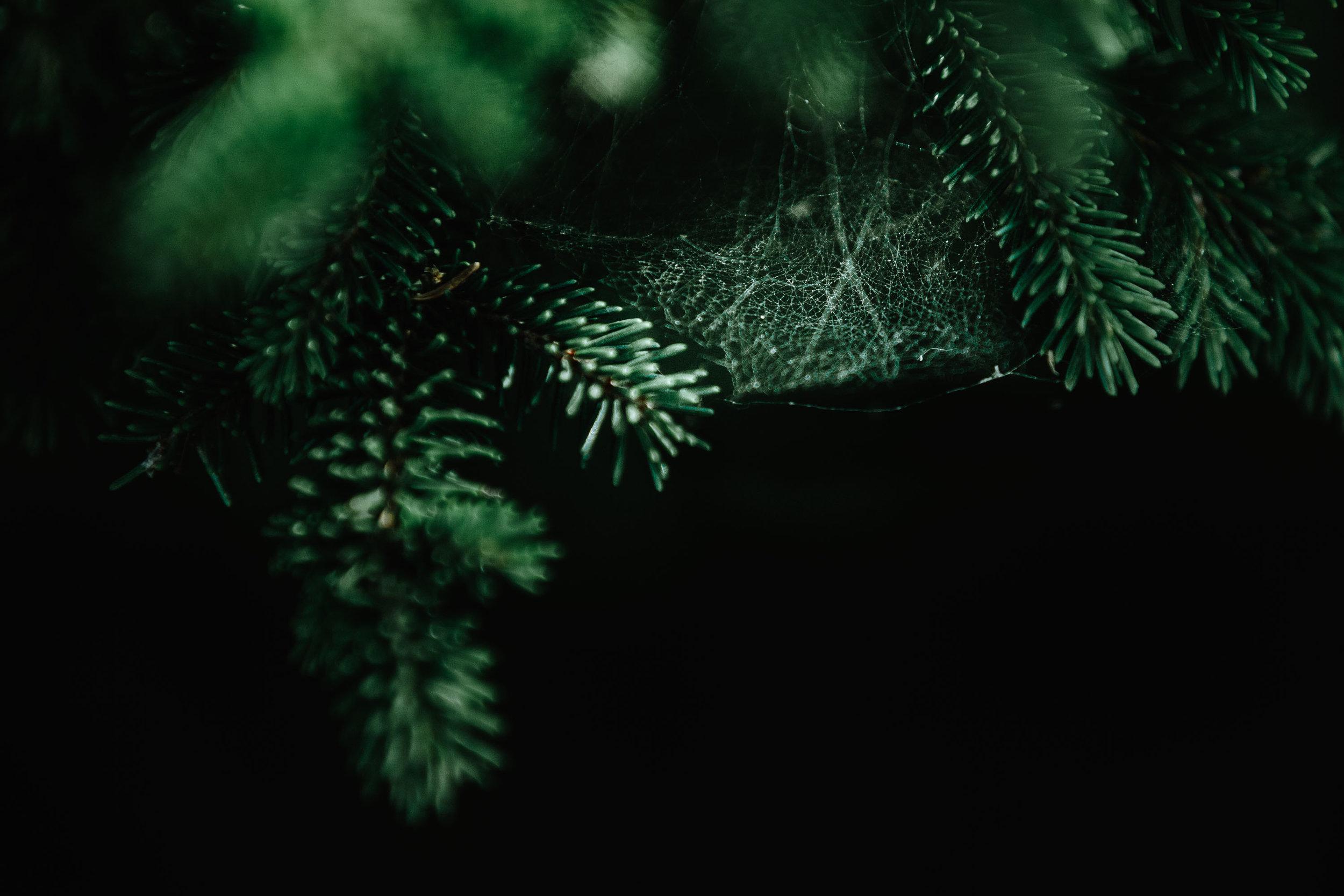 2017-10-09-@jmvotography-julian-mittelstaedt-fotograf-muenchen-foto-photo-9V2B6797.jpg