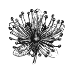 Logo22118-07.png