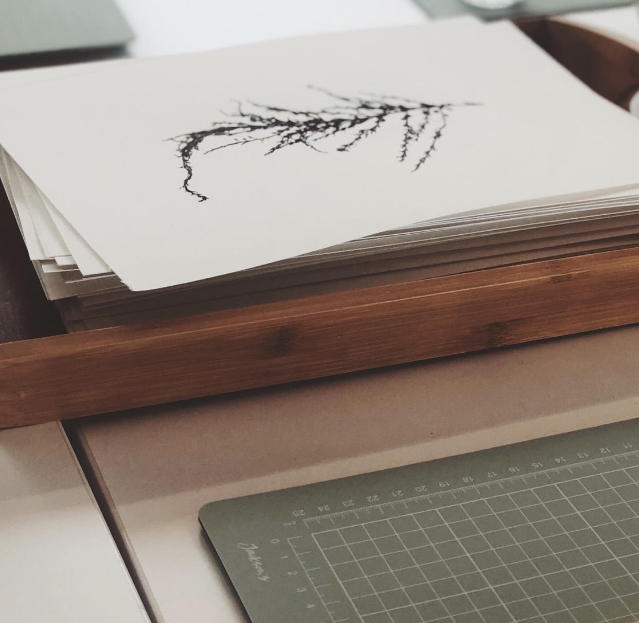 Heaps + Stacks Portfolio - La Mer 3.jpg