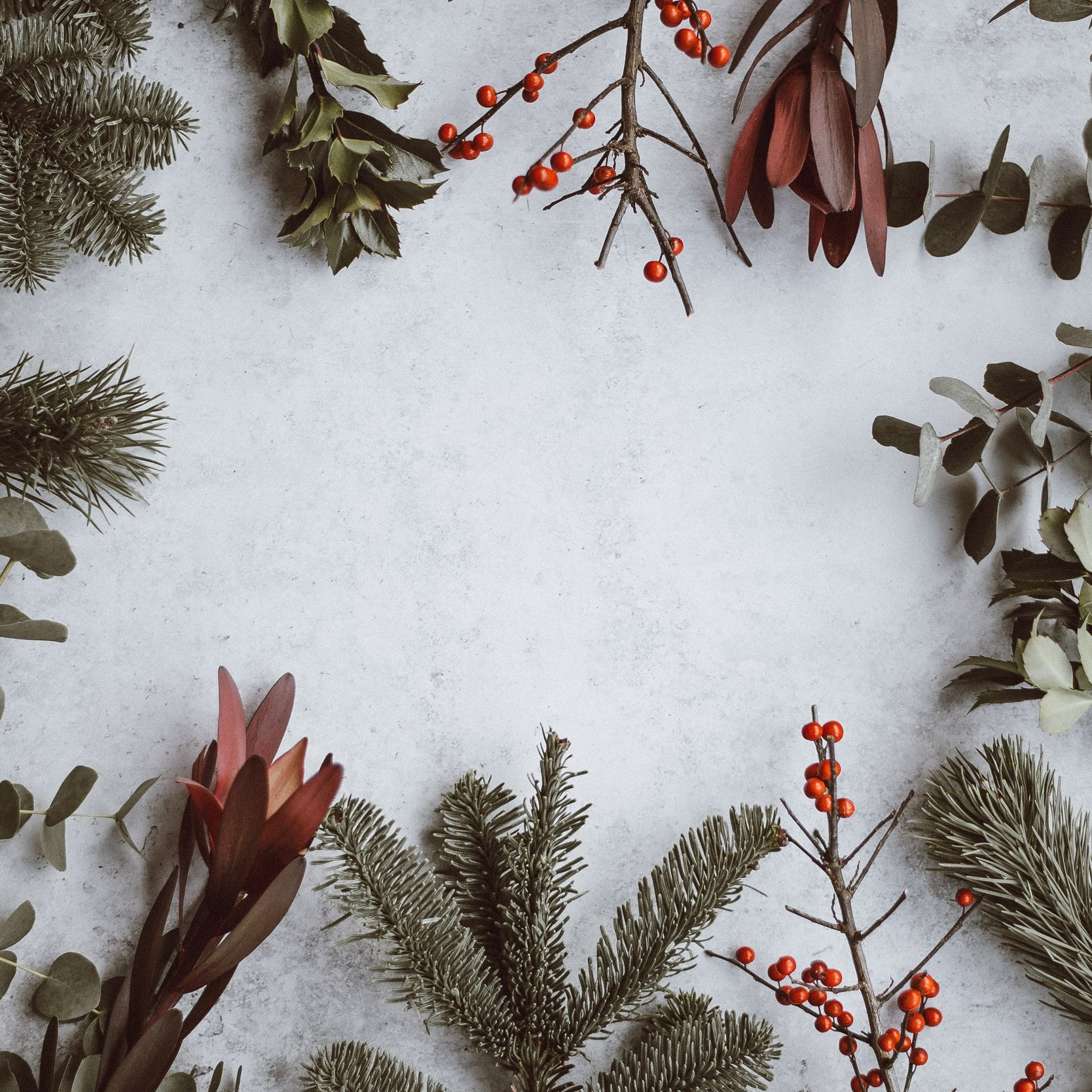 SUSTAINABLE CHRISTMAS   The festive season creates 30% more waste than any other time of year. This deck looks at ways we can enjoy Christmas classics with a sustainable twist.   DOWNLOAD