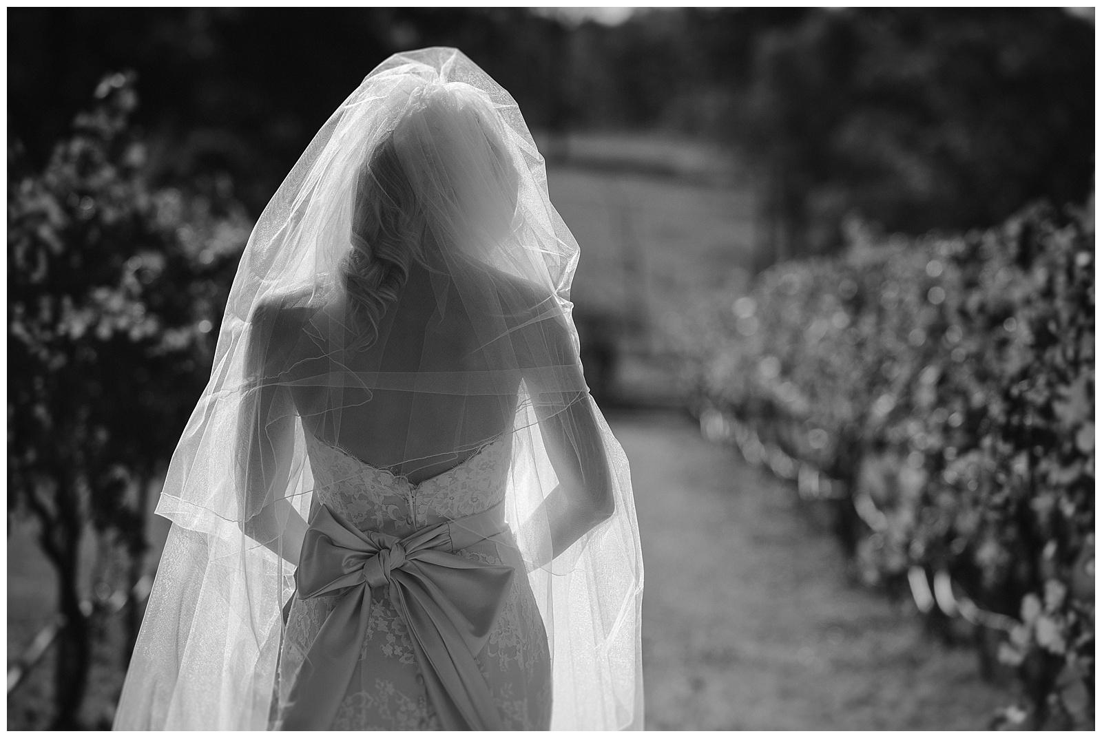 Ironbark Hill Wedding Popcorn Photography_0031.jpg