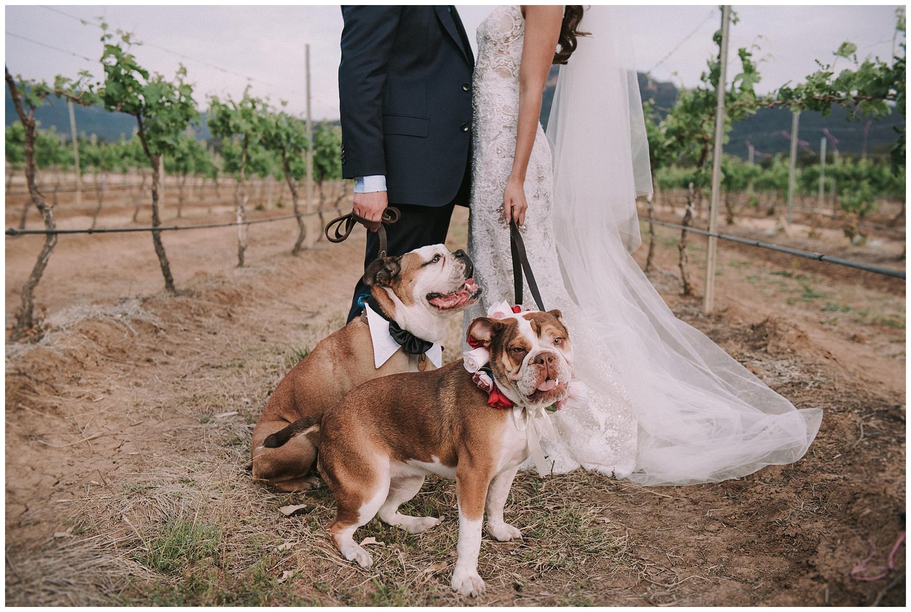 Circa1876 Wedding Photographer_0096.jpg