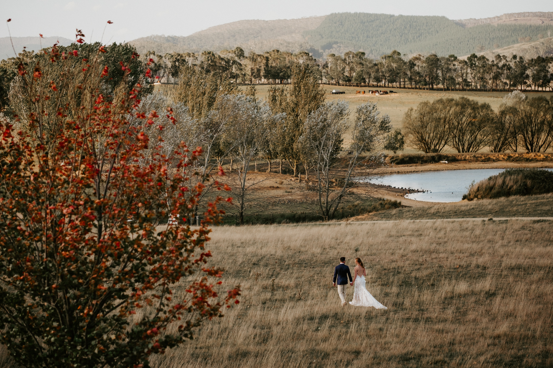 WALDARA FARM WEDDING PHOTOGRAPHY-023.jpg