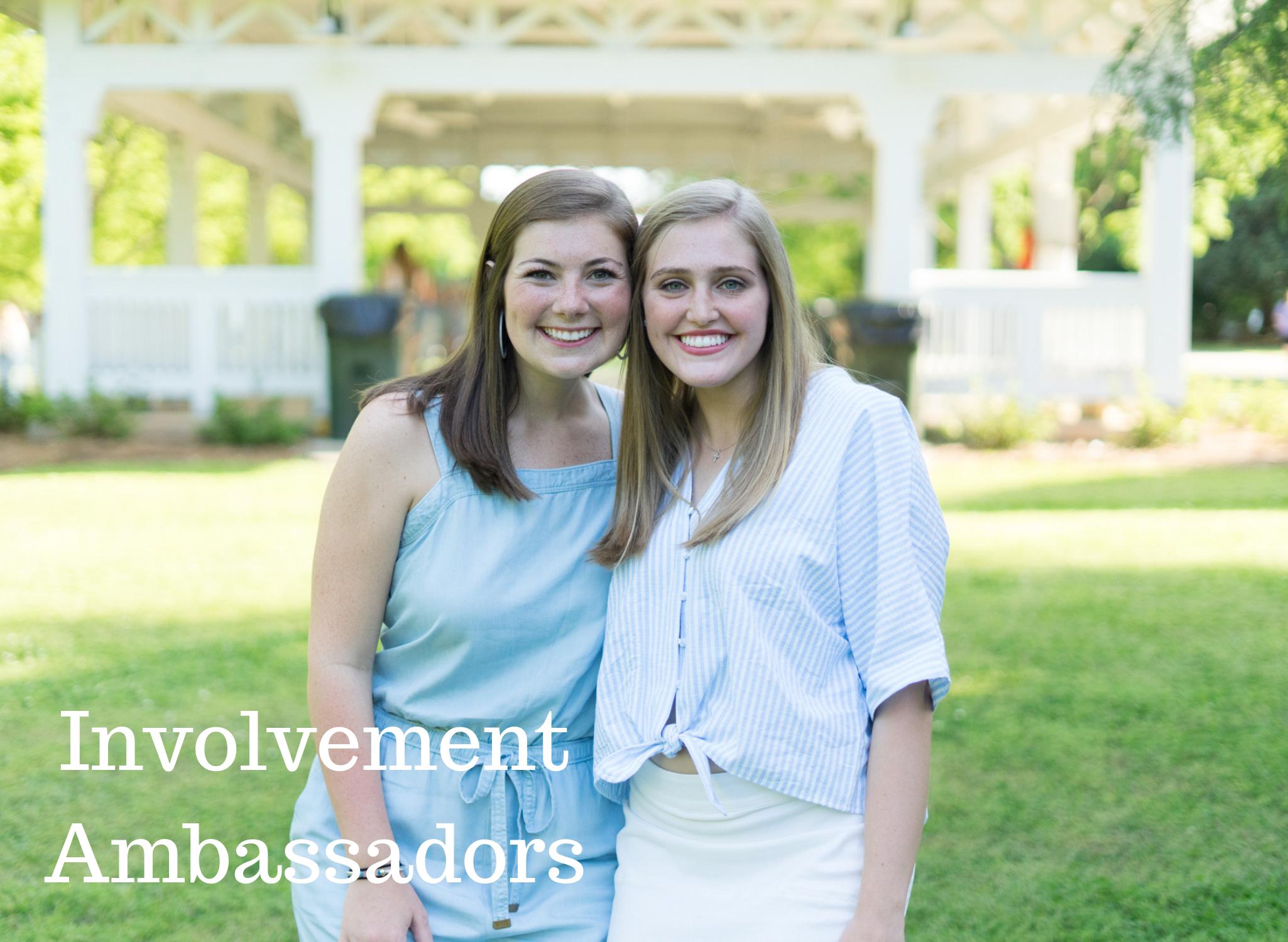 Involvement Ambassadors.png
