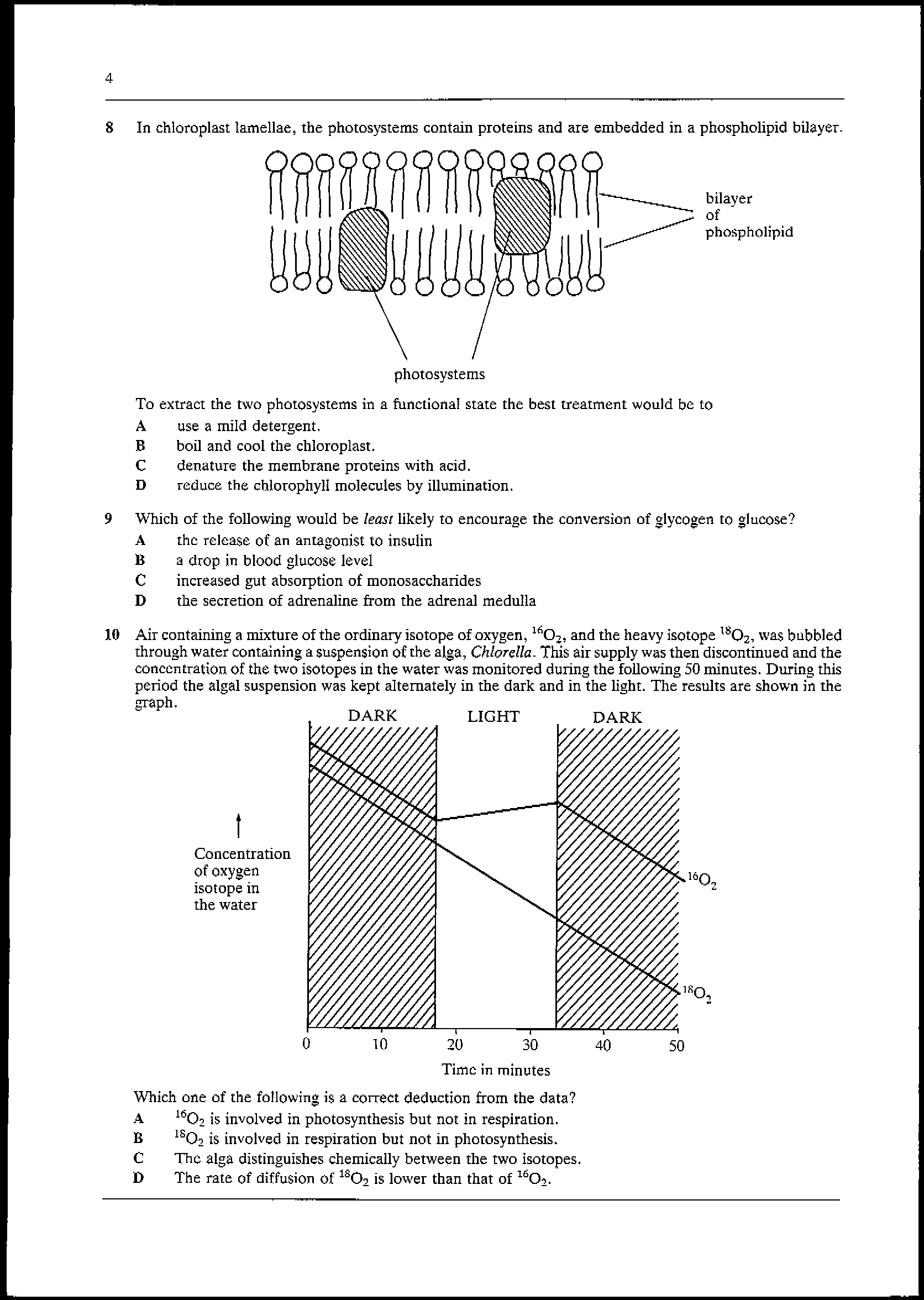 mc1991_Page_3.png